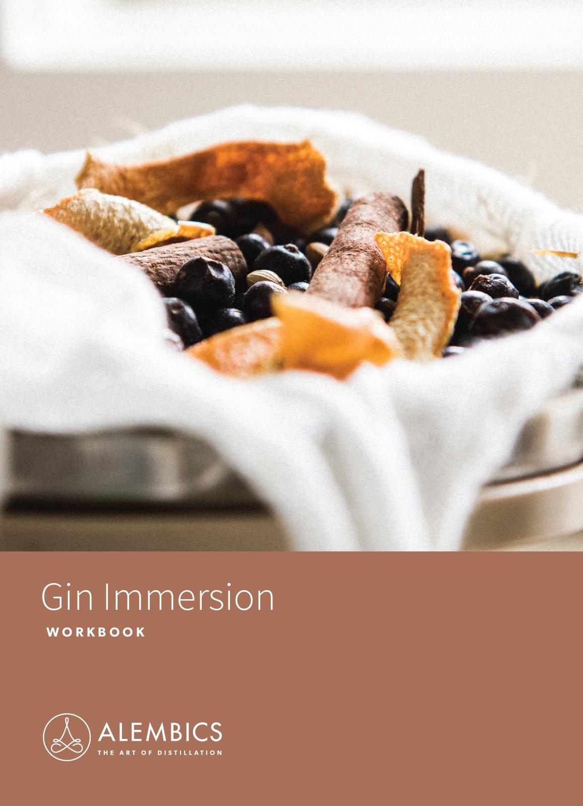 Gin Immersion Workbook
